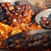 Chataignes qui grillent sur le feu